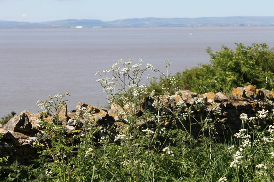 Rejecting the Severn Barrage